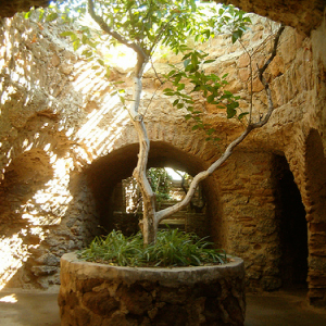 Week 7: Forestiere Underground Gardens